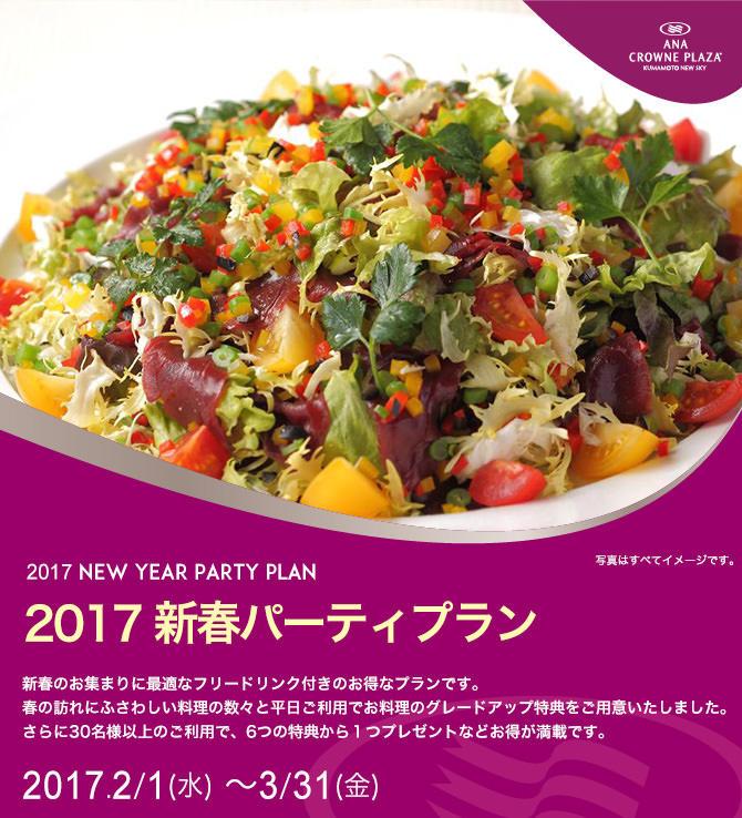 ANAニュースカイ新春のパーティプラン.jpg