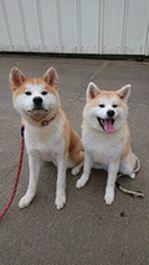 Eito-kun & Hina-chan.jpg